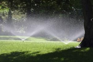 realizzazione_impianti_irrigazione_gallipoli_lecce_ugento_leuca