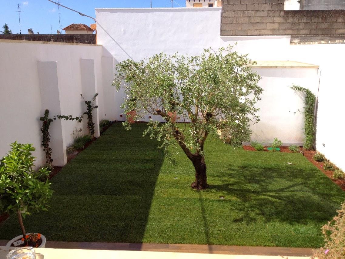 Prato pronto a rotoli centrovivai garden center for Prato gramignone
