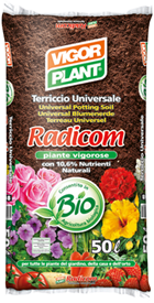 Radicom-vigorplant