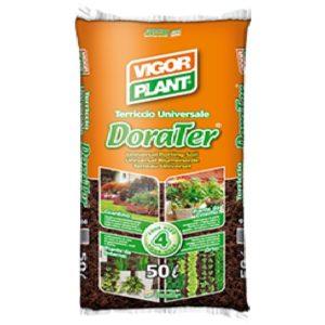 dorater-vigorplant